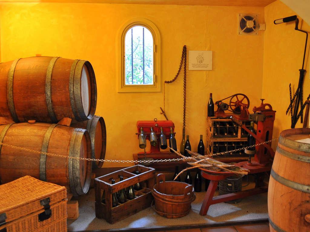 Séjour Languedoc-Roussillon - Week-end Oenologique avec visite et dégustation de vin dans le Gard  - 3*