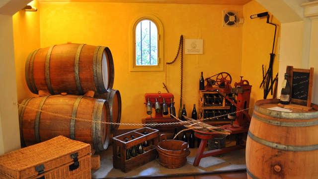 Week-end Oenologique avec visite et dégustation de vin dans le Gard