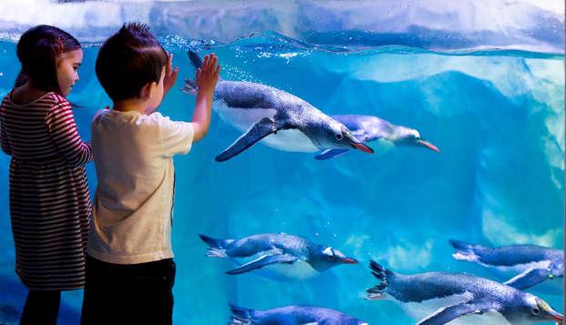 Escapada en familia con entradas para el Aquarium Sea Life (desde 2 noches)