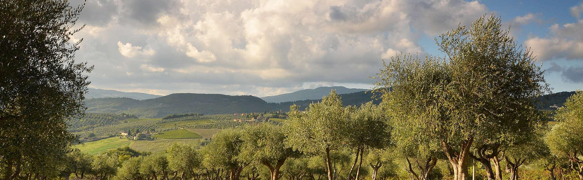 Séjour de rêve entre les belles collines toscanes, près de Florence