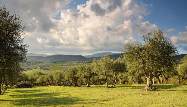 Momentos de ensueño entre las hermosas colinas toscanas cerca de Florencia