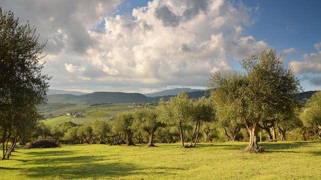 Favola tra le dolci colline toscane vicino a Firenze