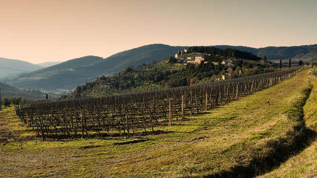 Degusta lo mejor de la cocina toscana en uno de los valles más hermosos del Arno