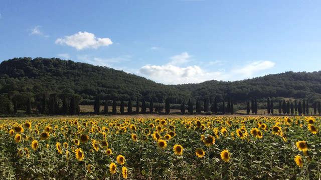 Natuurlijke geuren in het hart van de Toscaanse Maremma