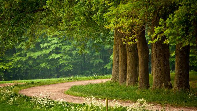 Geniet van de natuur en het historische Zutphen