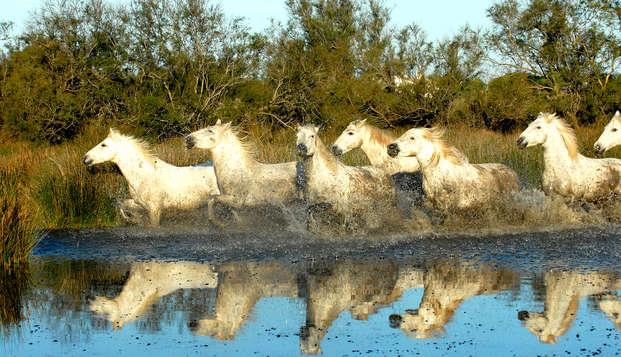 Partez en famille à la découverte du Parc Naturel de Camargue !