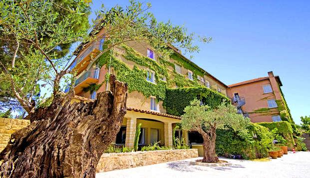Descubre Camarga entre Nimes y Arles