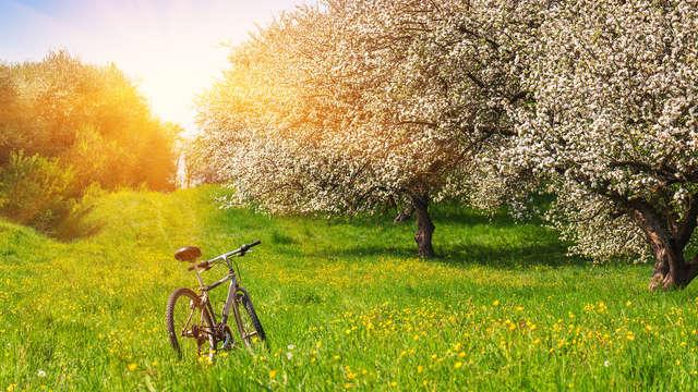 Week-end avec location de vélos électriques en Auvergne