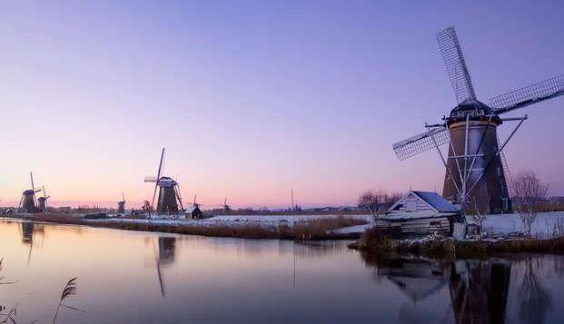 Week-end à vélo avec dîner à la mer à Naaldwijk (à partir de 2 nuits)