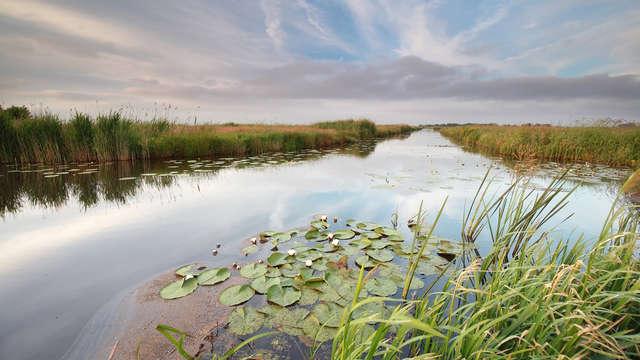 Culinair genieten in het groene Drenthe