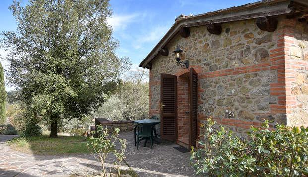 Tranquilidad en una casa rural, medieval, del corazón de la Toscana, ¡con degustación de vinos!
