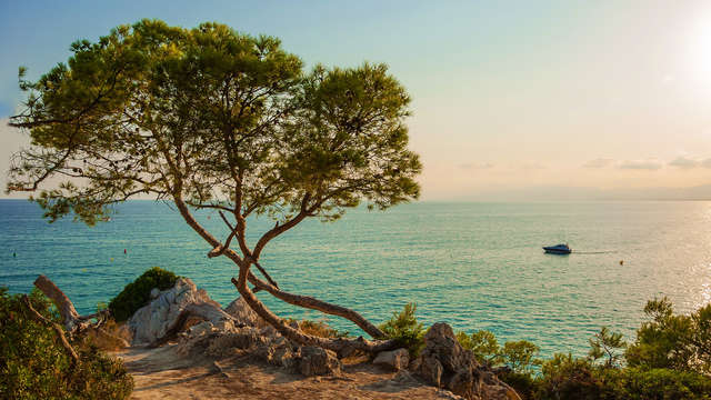 Vive el Mediterráneo en un hotel en Pineda de Mar