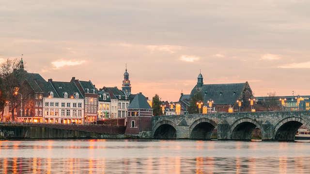 Ibis Budget Stein Maastricht