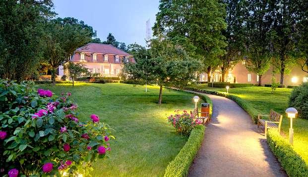Cena romántica en una preciosa residencia de Darmstadt (desde 2 noches)