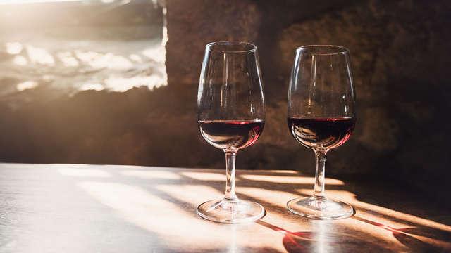 Escapada con degustación de vinos en la encantadora ciudad de Oporto