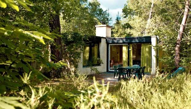 Hasta 4 personas en un cottage del complejo Les Hauts de Bruyères (7 noches)