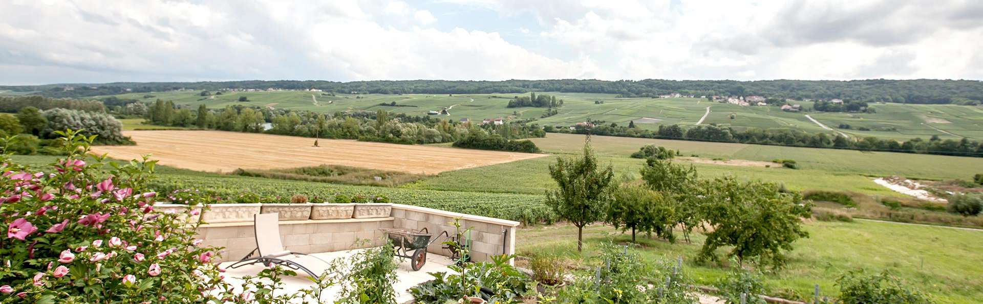 Domaine de Bacchus - Edit_View.jpg