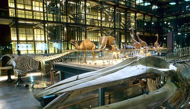 Entrada al Museo Nacional de Historia Natural y estancia de 3* en París