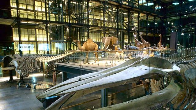 Séjour 4* au cœur de Paris et visite au Muséum National d'Histoire Naturelle