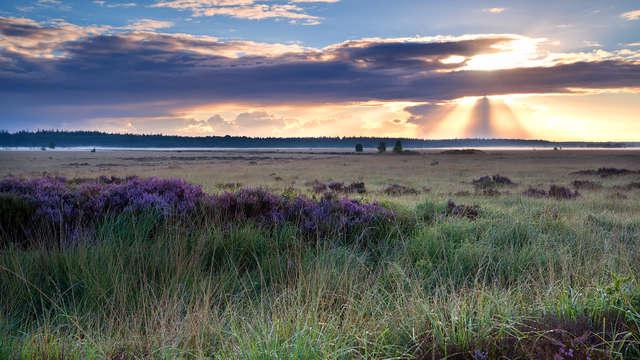 Geniet van rust en natuur in een historisch pand te Drenthe