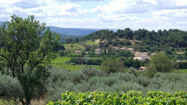 Séjour familiale près d'Avignon