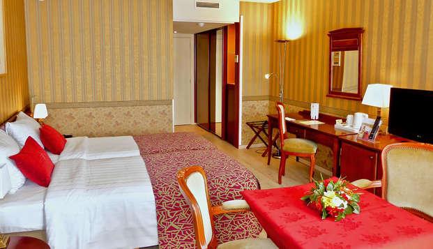 Hotel de Medici - NEW Standard