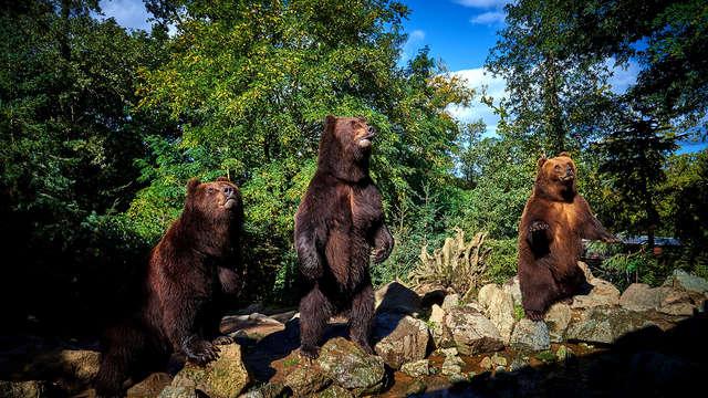 Escapade de charme en famille et découverte du Zoo de la Flèche