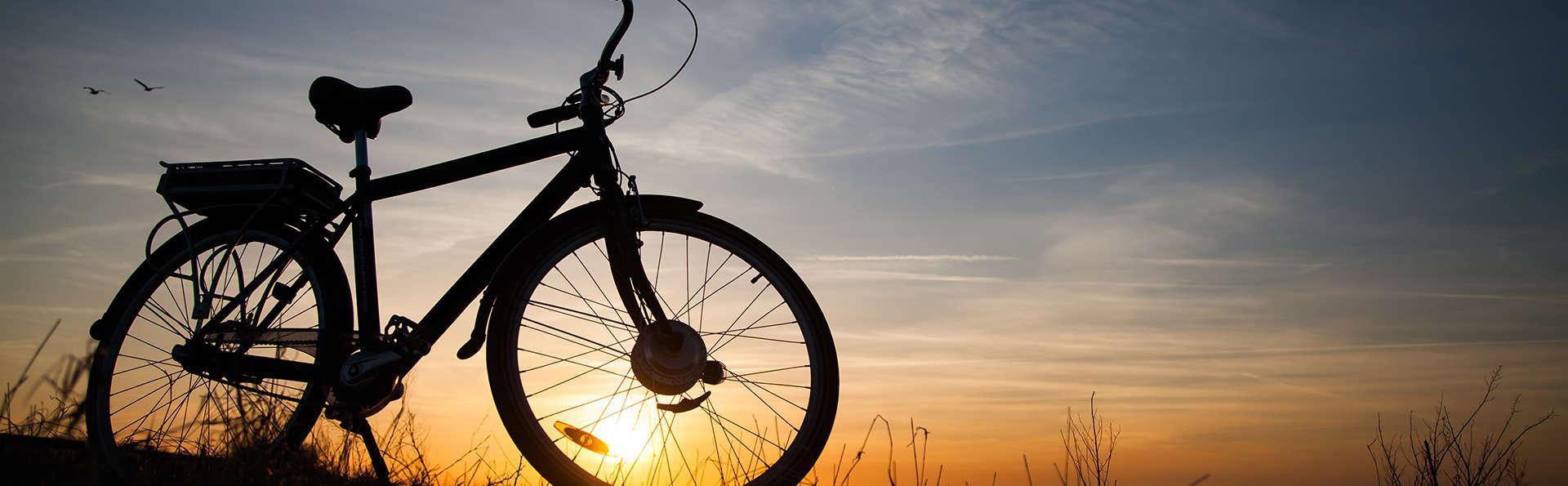 Faites du vélo le long de la côte avec un délicieux déjeuner