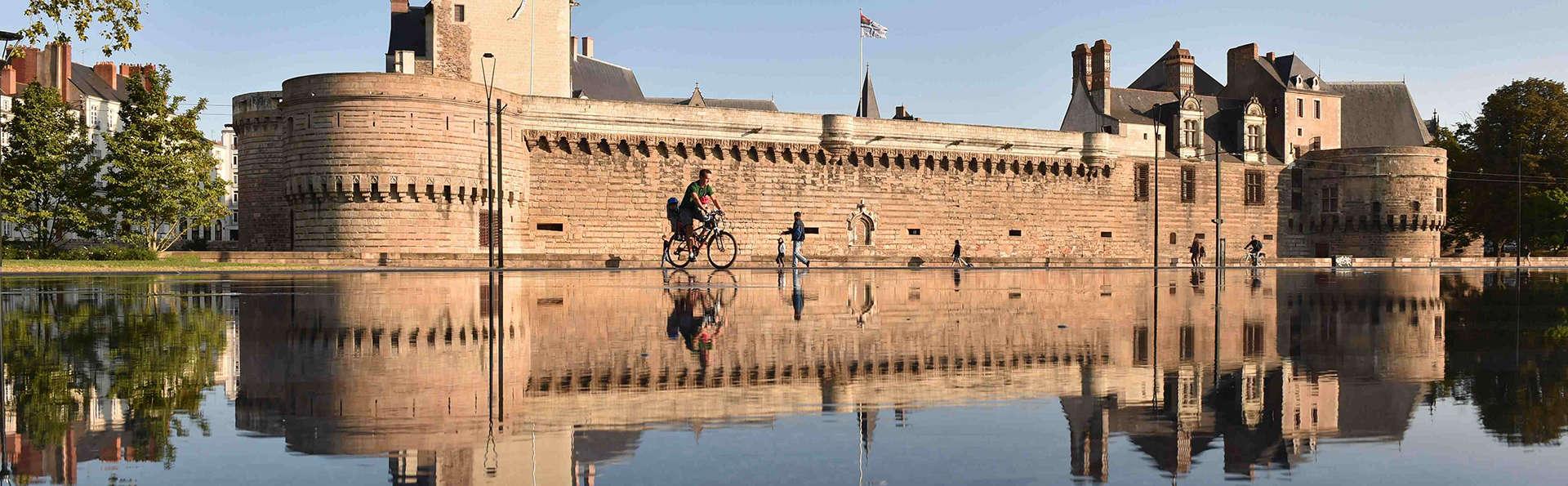 Découvrez le charme et l'histoire de la Vallée de la Loire près de Nantes