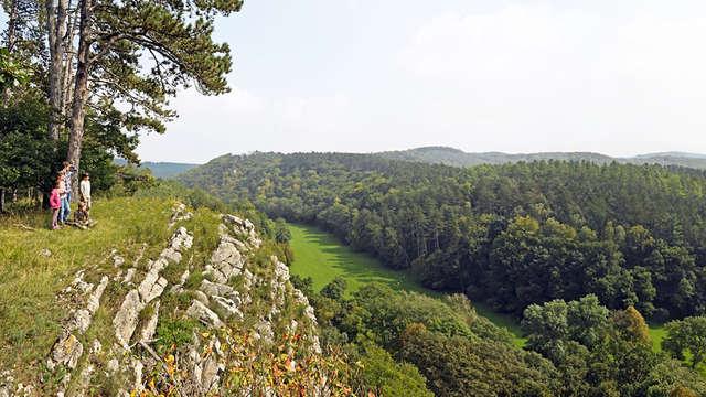 Ontdek het Domein van de Grotten van Han in de Ardennen