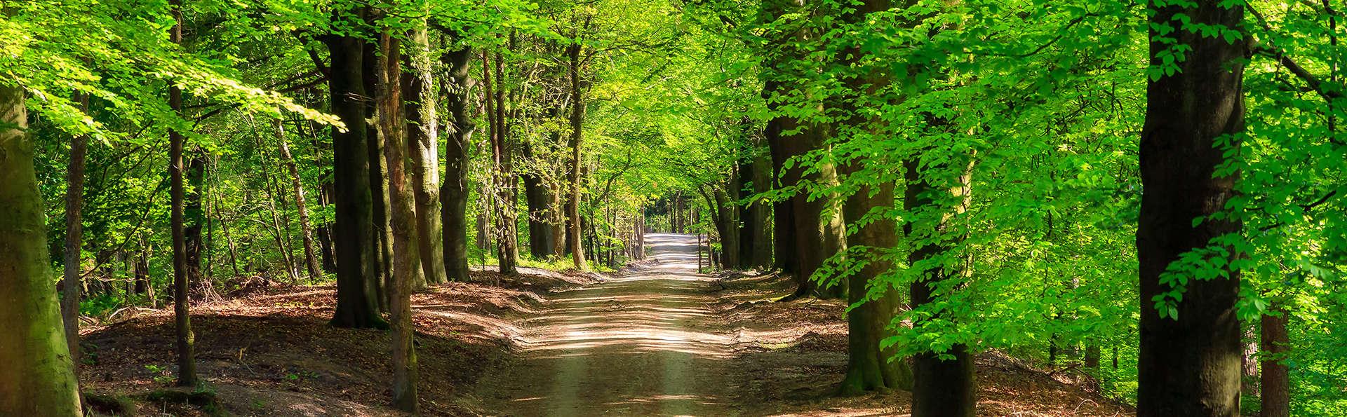 Profitez d'un week-end à vélo dans la Veluwe (à partir de 2 nuits)