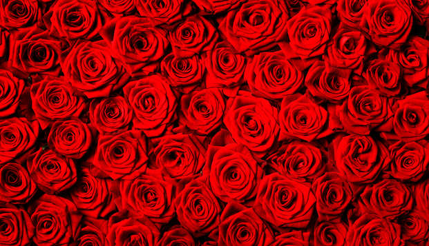 Escapada Romántica en el Empordà con cena, spa y cama de rosas