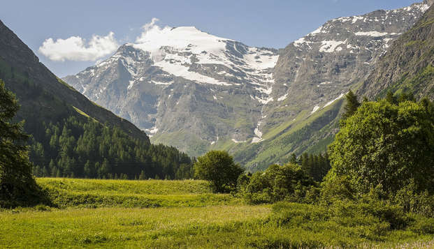 Échappée belle dans les Alpes dans un appartement confortable (à partir de 4 nuits)