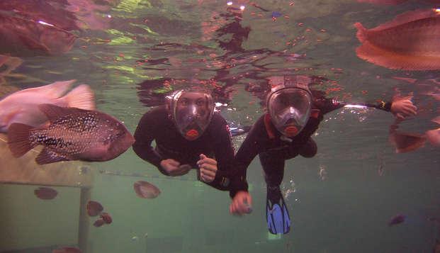 Nagez avec les poissons tropicaux d'eau douce