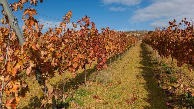 Weekend met bezoek aan wijnboerderij en een wijnproeverij in het Noorden van Spanje