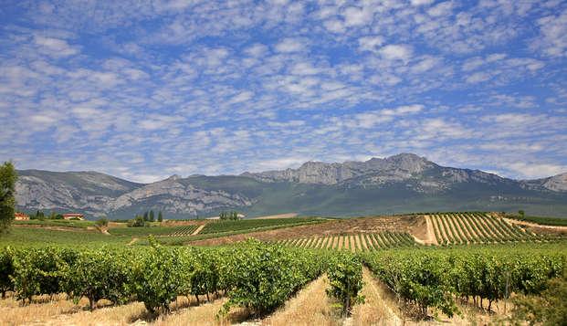Descubre la belleza natural de la Rioja Alavesa entre amplios jardines y viñedos
