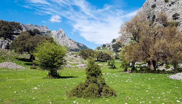 Escapada con picnic y hermosas vistas a Sierra Nevada