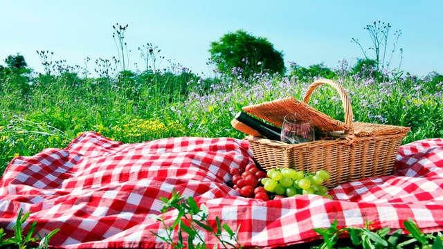 1 cesta de picnic para 2 adultos