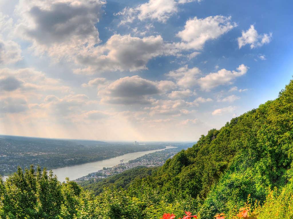 Séjour Allemagne - Nature le long du Rhin à Bad Honnef  - 4*