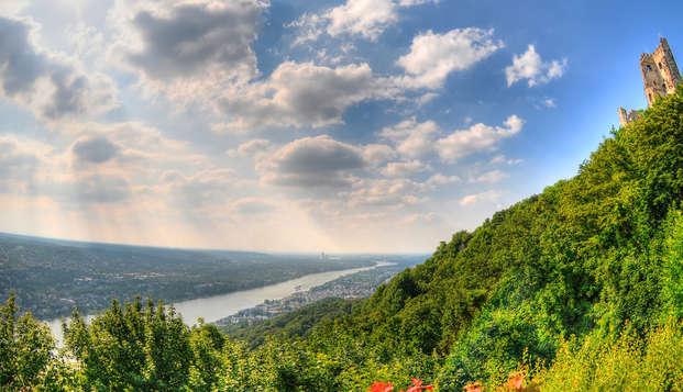 Nature le long du Rhin à Bad Honnef