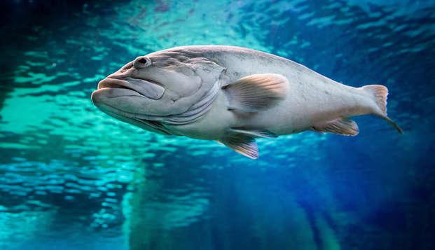 Éscapate a Almeria en pleno centro con desayuno y entradas al acuario