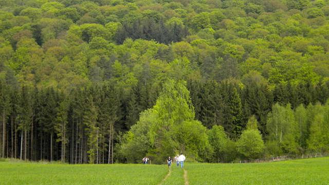 Escapade au coeur des Ardennes dans un établissement au caractère authentique