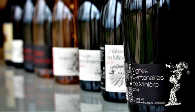 Week-end avec dégustation de vins à Chinon