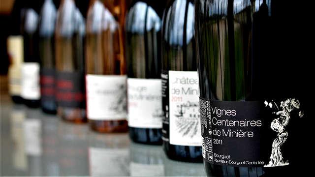 Degustación de vinos en la localidad de Chinon