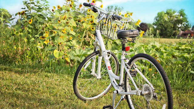 Découverte de la campagne luxembourgoise à vélo et ressourcement à Mondorf-les-Bains !