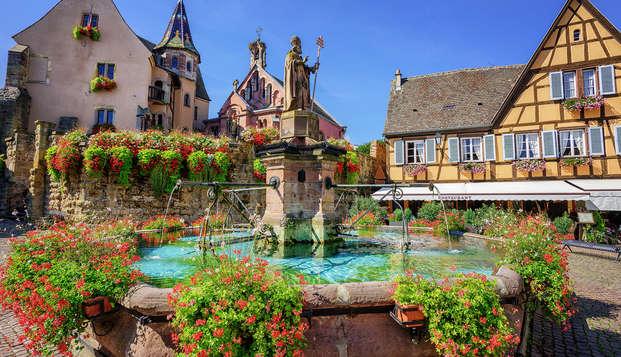 Découvrez un village traditionnel d'Alsace !