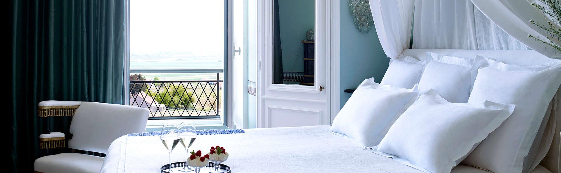 Disfruta de una gran suite con vistas a los viñedos