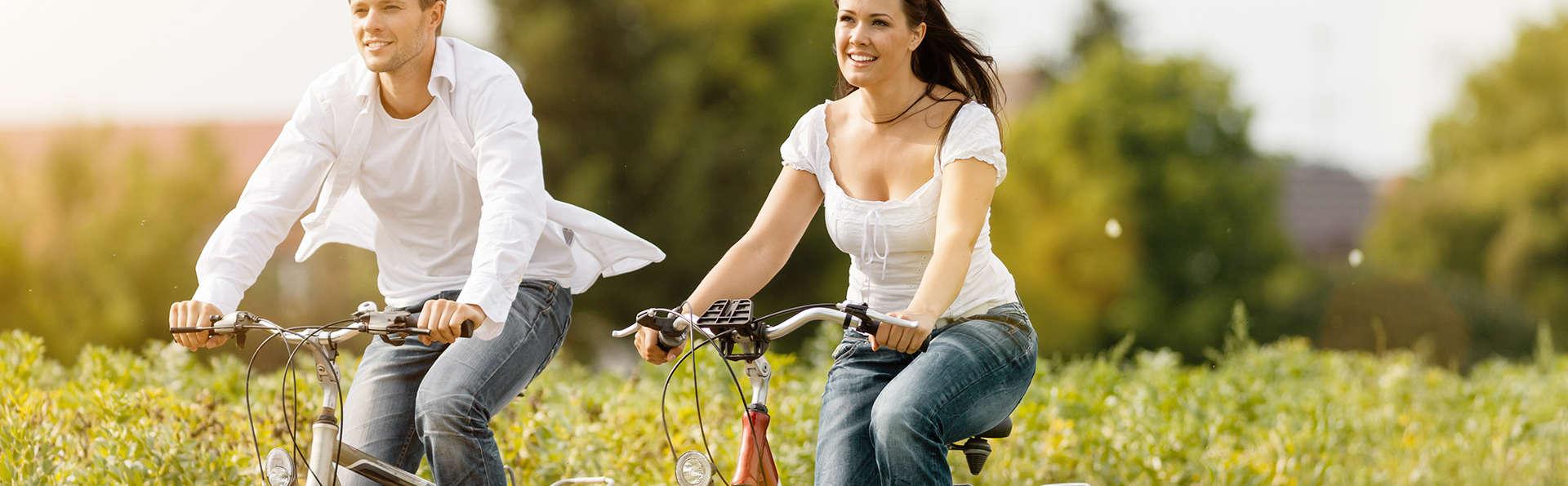 Découvrez les environs d'Alost à vélo