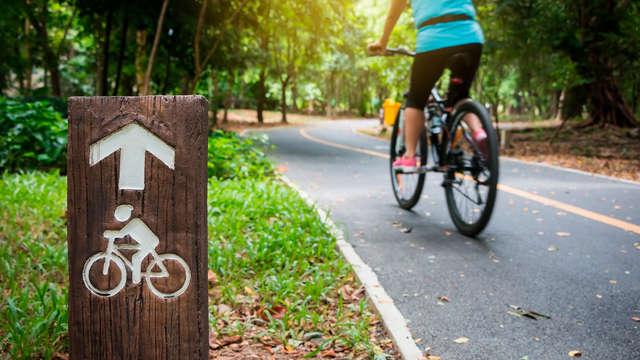 o Alquiler de bicicletas