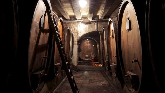 Visite culturelle et dégustation de vin près de Colmar (à partir de 2 nuits)